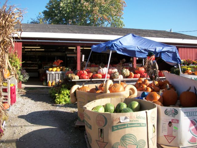 Farm stand on a path between New Castle and Newark, Delaware