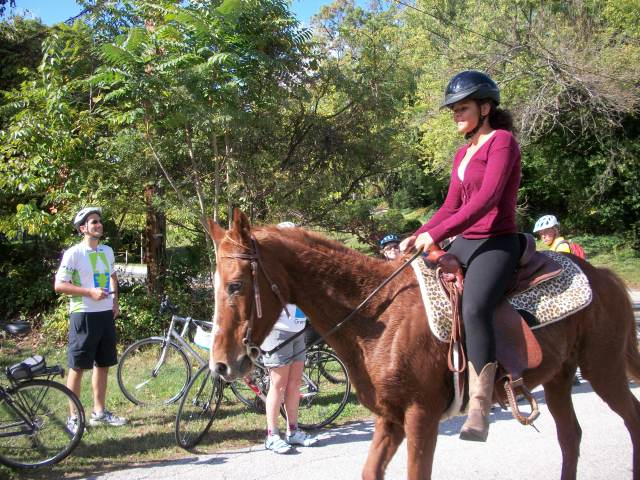 Horse and rider passing cyclists on the BWI Trail