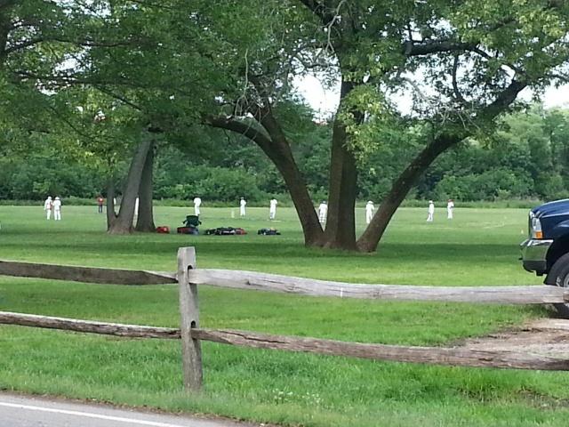 cricket in johnson park
