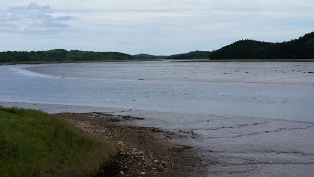 machias low tide