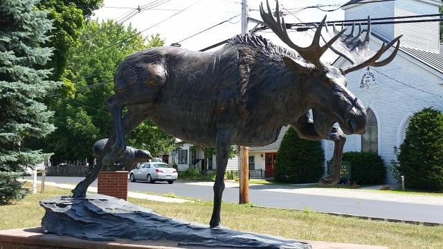 ecg moose unity