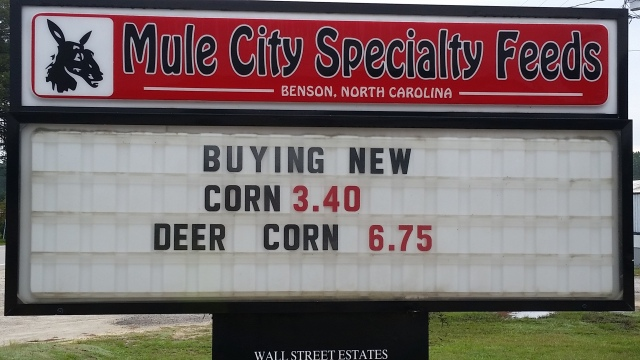 ecg-corn-sign
